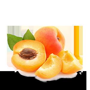 Huile-d'Abricot-bio