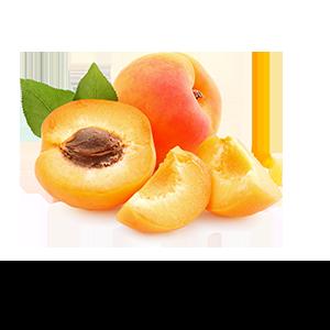 Huile-d'Abricot-bio_B